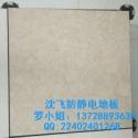 深圳龙岗陶瓷防静电架空地板厂家图片