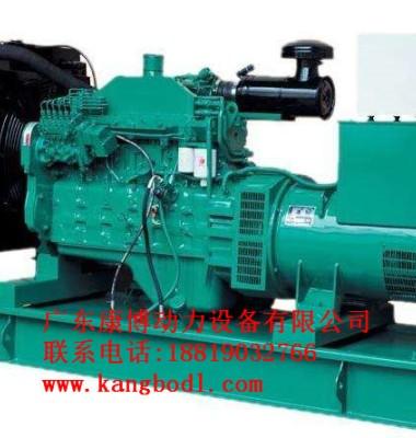 玉柴发电机组图片/玉柴发电机组样板图 (4)