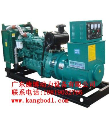 玉柴发电机组图片/玉柴发电机组样板图 (1)