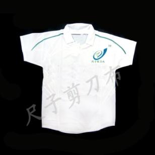 T恤衫 logo衫 广告衫图片