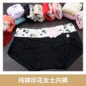 纯棉印花女士内裤图片