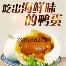 广西北部湾烤海鸭蛋批发 多油即食烤熟咸鸭蛋 红树林海鸭蛋 北部湾海鸭蛋