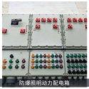 防爆照明(动力)配电箱易燃易爆环境电源配电动力开关柜控制箱