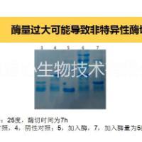 供应用于酶切融合蛋白的重组牛肠激酶 重组牛肠激酶 牛肠激酶