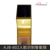 AJB-802人脸识别智能锁 智能感应人脸识别锁  家居安全防盗大门锁 人脸锁