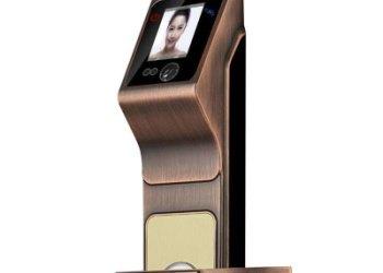 AJB-802人脸识别智能锁图片