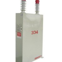 原装进口TAF-T115300S06R单相电力电容器