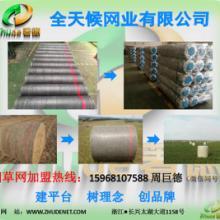 遮阳网生产厂家 捆草网