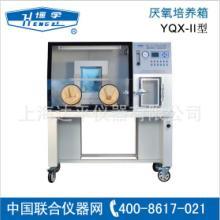 厌氧培养箱生产厂家 厌氧培养箱经销商 达平供