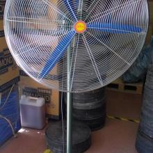 长城牌工业牛角扇  750MM工业牛角风扇 工业风扇图片