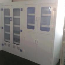 泰州实验室pp器皿柜