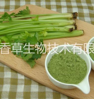 西芹粉价格宁夏芹菜汁浓缩粉图片/西芹粉价格宁夏芹菜汁浓缩粉样板图 (1)