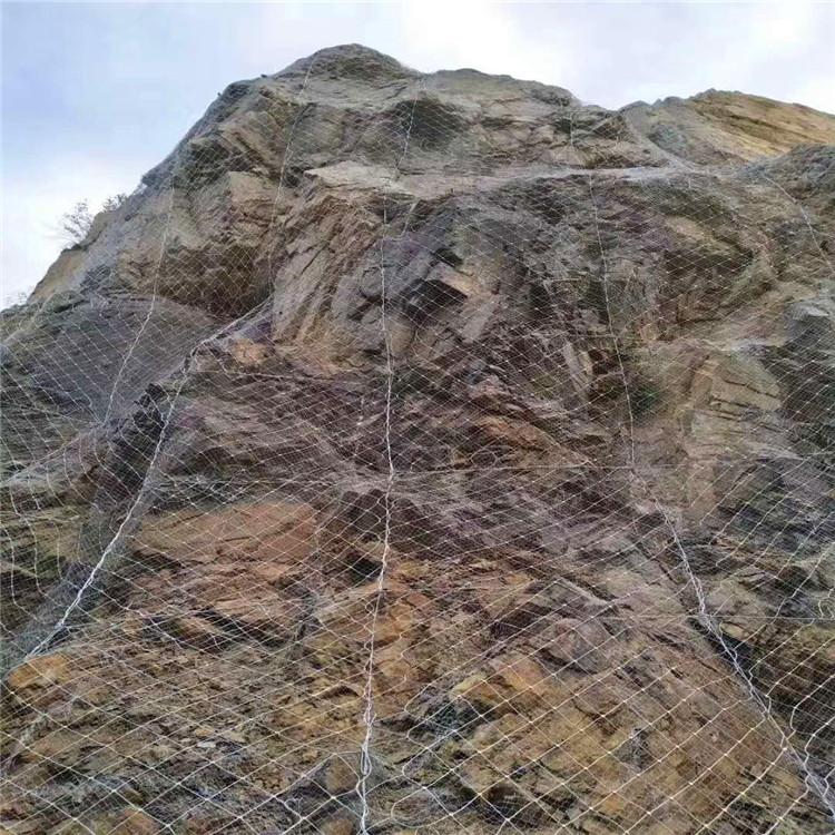 安平博皇丝网厂 防护网 边坡防护网 勾花网