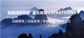 四川省战略咨询公司战略咨询公司战略咨询公司供应 满足客户的战略咨询公司