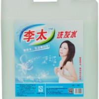 李太散装洗发水20KG经济B型