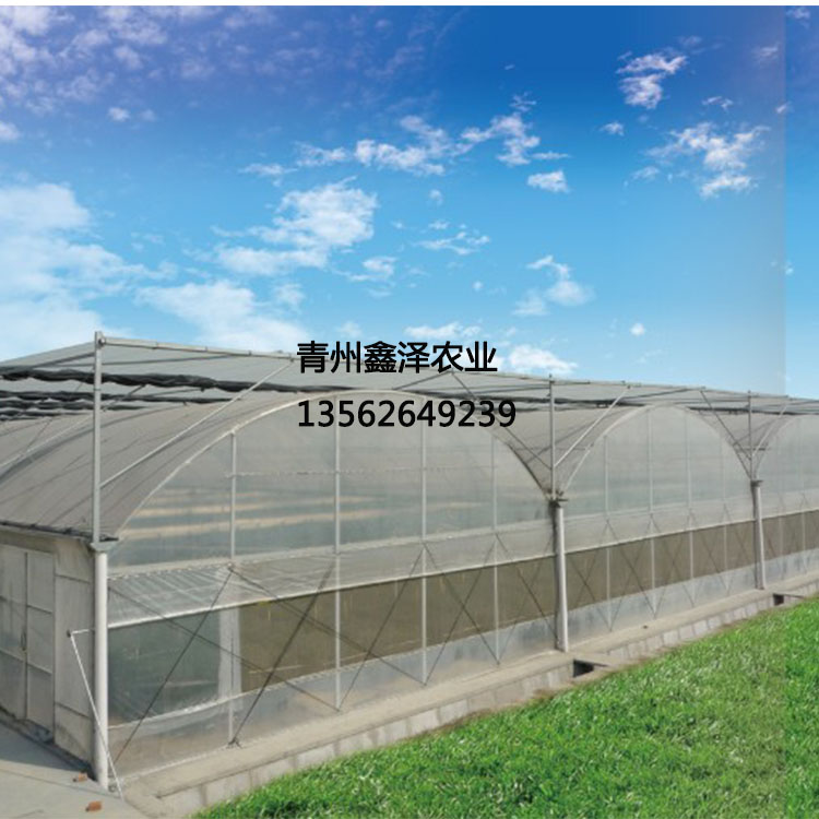 专业生产温室骨架 无土栽培专用温室 无土栽培专用温室 无土栽培大棚 草莓种植大棚 草莓种植温室大棚