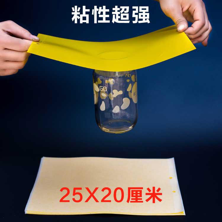 粘虫板黄色双面粘胶农用诱虫板强力粘板果园大棚防水篮板灭虫板
