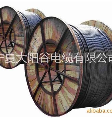 低压铝芯电缆图片/低压铝芯电缆样板图 (2)