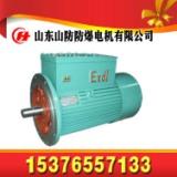 YBK2-200L1-2电机,30KW防爆电机,隔爆型电机