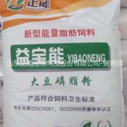 大豆磷脂油粉厂家销售图片