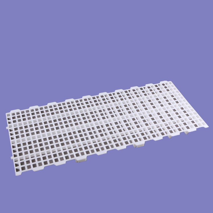 1200*500mm鸡鸭鹅禽舍平养用塑料漏粪地板  育雏用小孔塑料漏粪板