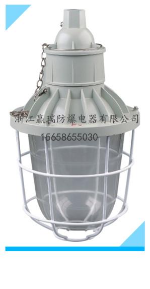 浙江温州 防爆灯BAD51-200防爆金卤灯250W吸顶式安装壁式安装直销