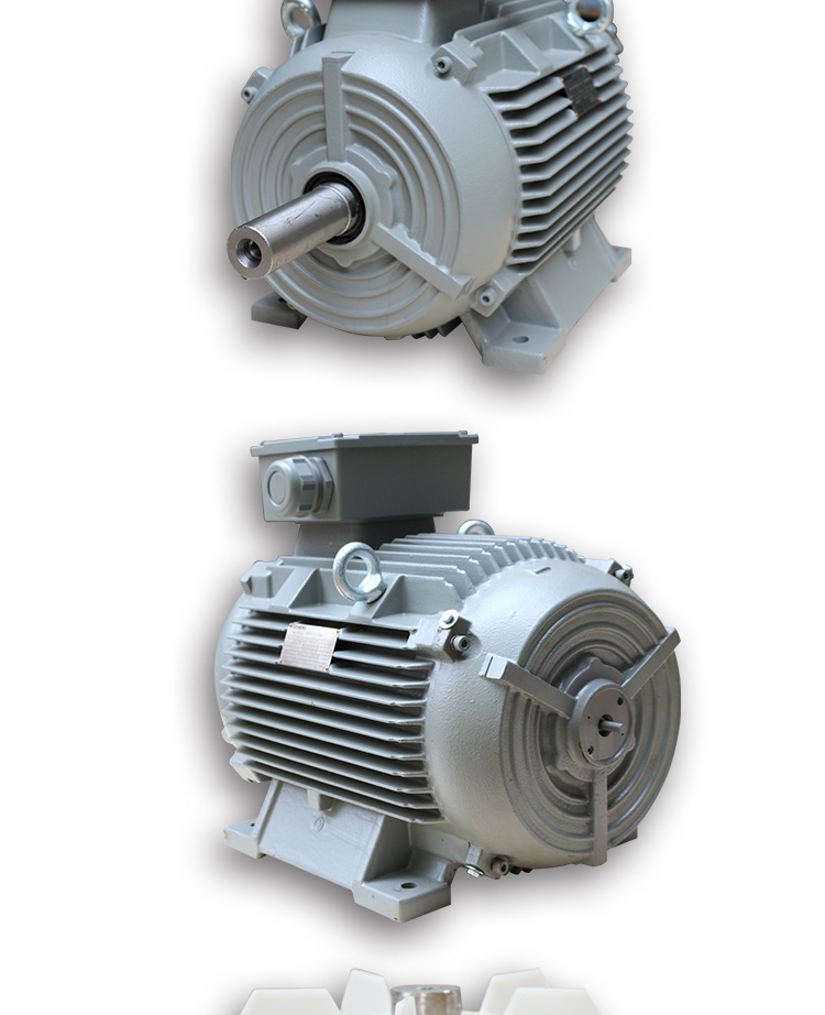 3kw2极三相异步电动机