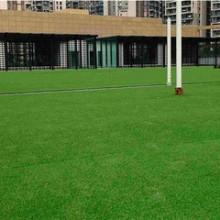 幼儿园人造草坪知识批发