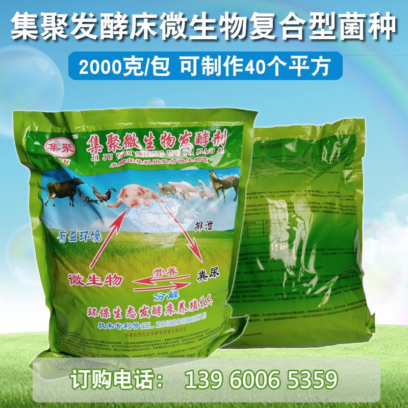 养猪场猪粪处理 猪粪发酵剂 零排放 有机肥发酵剂 腐熟剂 粪便处理发酵剂