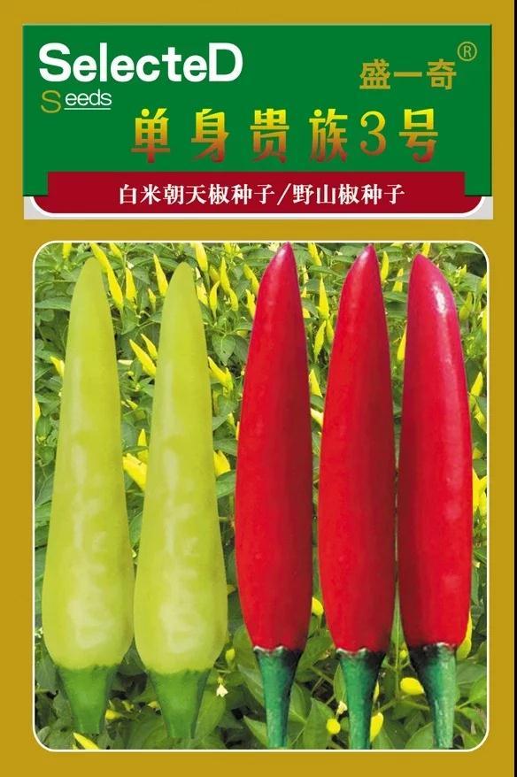 单身贵族3号微皱小米朝天椒种子 朝天椒辣椒种子基地 家庭田园辣椒种子  辣椒种子价格