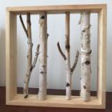 白桦树画框|白桦树工艺品|自然工艺品|墙壁装饰白桦树画框|辽宁白桦树批发