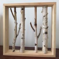 白桦树画框