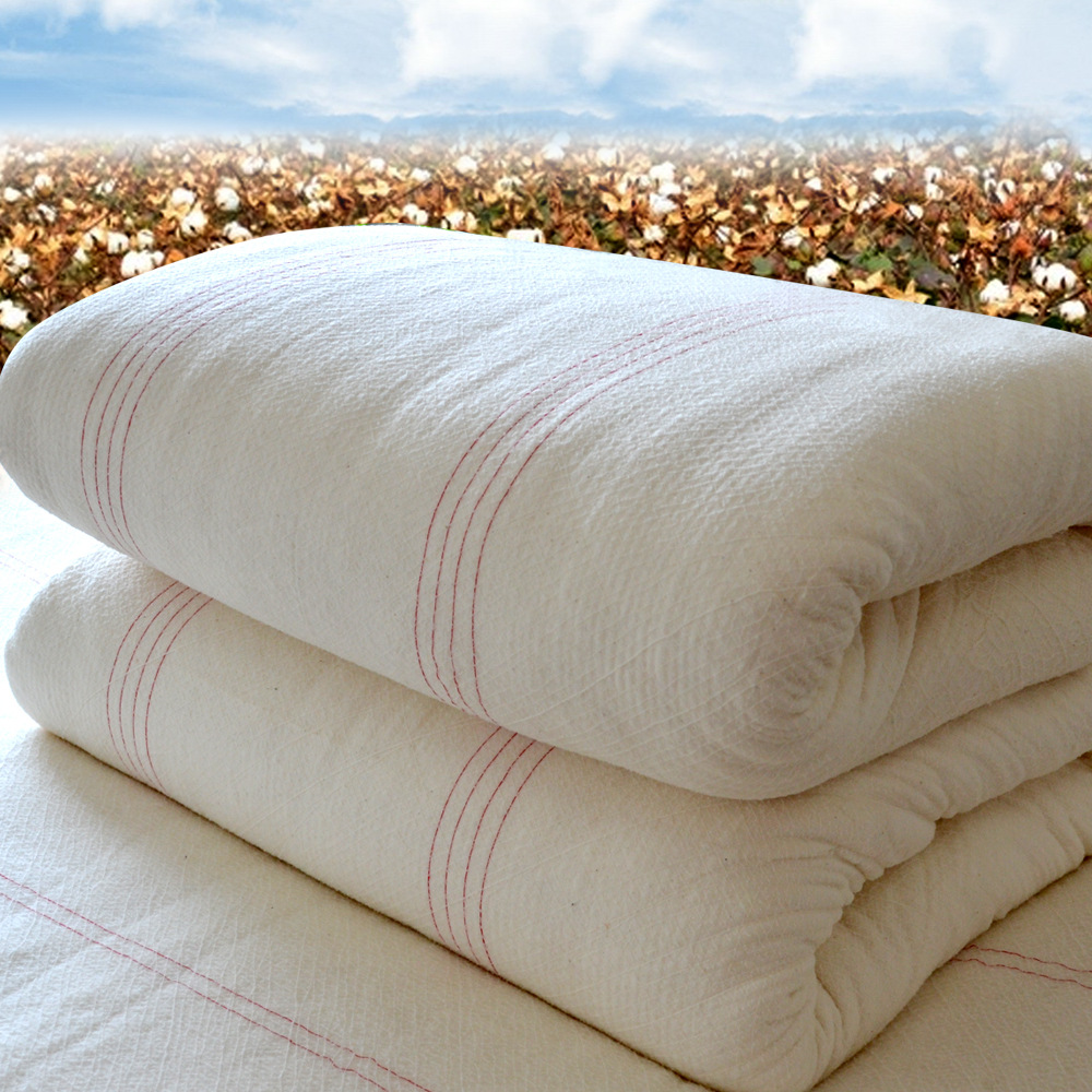 优质长绒棉生产商加工定制采购报价 供应优质长绒棉批发价格哪个牌子好 广东长绒棉批发商代理供应商厂家直销