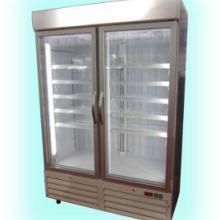 立式低温玻璃门冷柜 立式低温双玻璃门冷柜