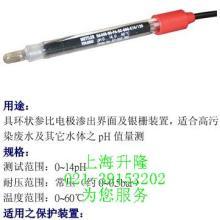 OD7685匹磁溶氧仪