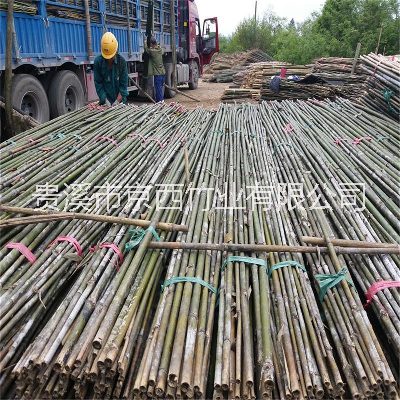大量供应2米-5米果树支撑竹杆