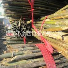 用于架西红柿|架番茄的2米5竹竿价格|蔬菜架竿
