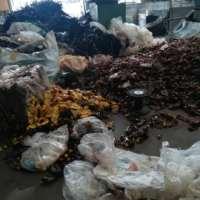 工厂塑料胶头回收