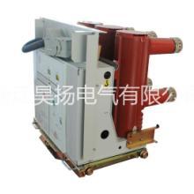 ZN63(VS1)-12户内固定 永磁真空断路器批发