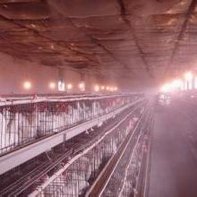 芜湖畜牧屠宰车间喷雾除臭系统权威厂家制造批发