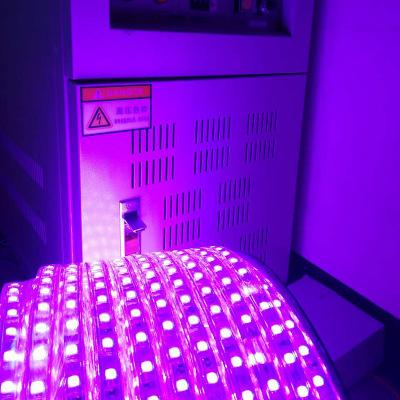 供应5050rgb灯条LED全彩闪烁软灯带 双排LED灯批发 全彩LED灯带价格