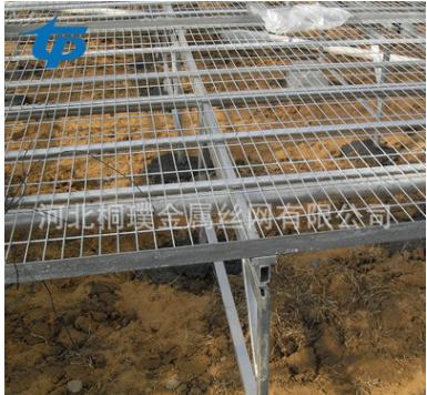 移动苗床 简易移动苗床 方便安装运输 温室简易生态园架子 移动苗床哪家好 厂家直销