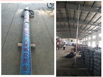 天津井用水泵-潜成信誉好的水泵生产厂家