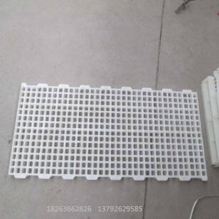 塑料鹅用漏粪板 鹅塑料漏粪地板图片