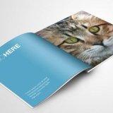 佛山市设计制作画册.产品画册设计,排版,提升企业品质为客户价格电议品质保证
