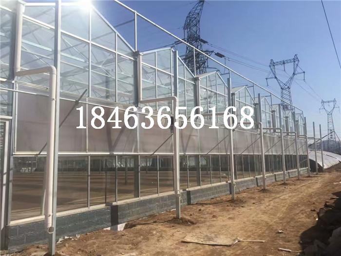玻璃温室产品分类选择 甘肃玻璃温室产品分类选择