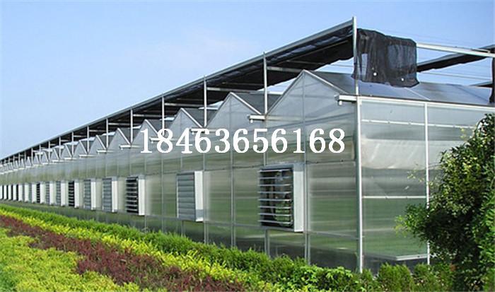 阳光板大棚厂家 pc板温室大棚价格 pc板温室大棚哪家好 pc板温室大棚价格表 pc板温室大棚哪家好 pc板大棚