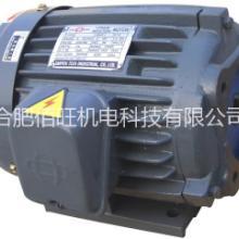 SANYOUCO.LTD 油泵电机 SY-1038H-383U 润滑泵电机