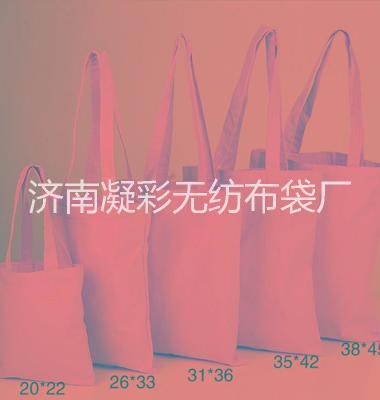 济南帆布袋定做厂家直销图片/济南帆布袋定做厂家直销样板图 (3)