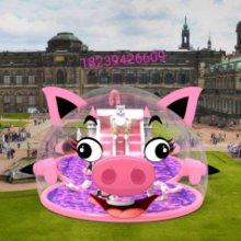 粉色世界气模新款猪猪乐园上线出租 气模新款猪猪乐园 粉红猪气模租赁出售 猪造型气模